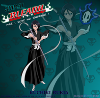 Shikai Kuchiki Rukia 01 by B-FT-OP-PROJECT