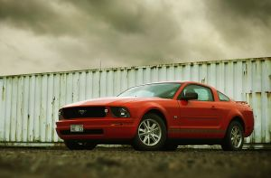 Mustang... by dejz0r