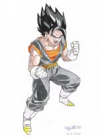 Vegetto alternative battle suit by Vegetto90