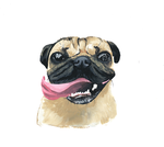 Pug life by cssnipez