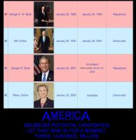 Presidents of America by niboswald