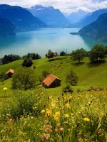 Lake Lucern by Insensitive-beauty