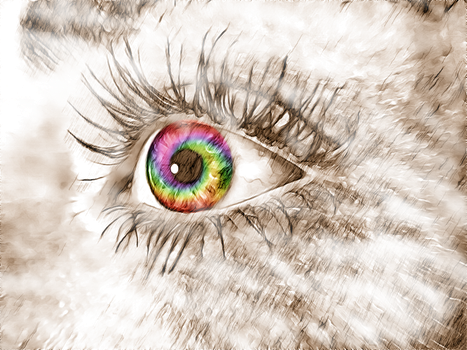 Eyes Are The Window To The Soul 1  By Autumncalyps by gaia12es