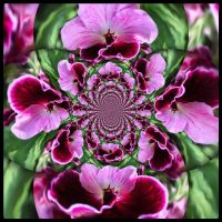 Crazy fractal flower by poca2hontas