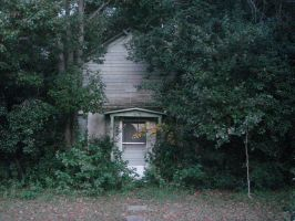 Overgrown Shack 1 by estock
