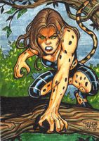DC Woman of Legend - CHEETAH by JASONS21