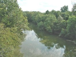 Darby Creek from the Bridge by vidthekid