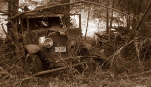 Old Car In Forest by PamplemousseCeil