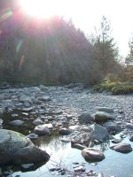 Sunshine in Hafod by purplepineapple77
