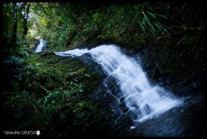 School creek falls by shadowfoxcreative
