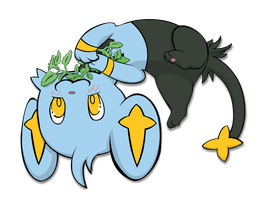 Shinx and Catnip by Shikuroshi