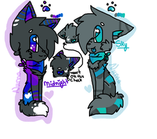 Midnights and Skys Reference Sheets by snickIett