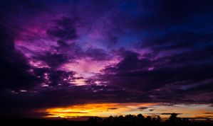 Purple Ending by matthewfoxxphotos