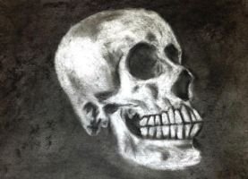 Erased Skull by KatieCroo