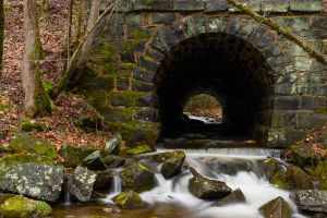 Stream Tunnel by TadLittle