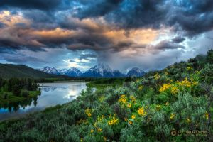 Storm at Oxbow Bend 2429 by pesterle