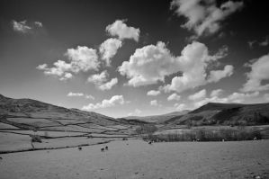 Sunny Cumbria by taffmeister