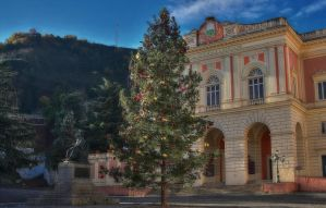 Christmas' tree -hdr by yoctox