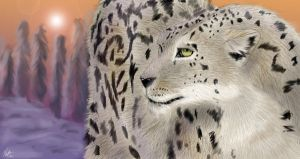 Snow Leopard by neecolette