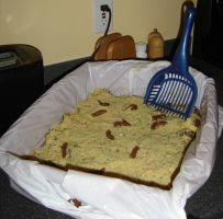 Kitty Litter Cake by martisunshine