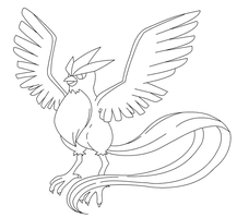 Articuno Lineart by kasanelover