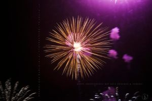 Independence Day in Trinidad and Tobago by philphilos