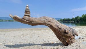 Driftwood hand and stone in hungary by kanya by tom-tom1969