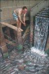 3D Chalk Drawing 4 by ABCalex