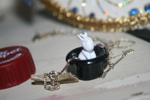 Rabbit in a hat.. by evalunaofficial