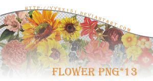 Flower png pack #05 by yynx151
