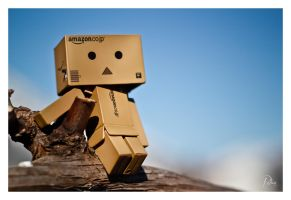 Danbo in the Sky by Robinours2b