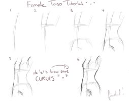 Female Breasts/Torso Tutorial by RiceBalls4Me
