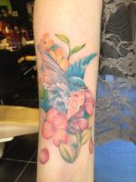 Finished bluebird by kayleytatts