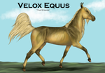 Velox Equus 'the striker' Breed Preview-final? by patchesofheaven74