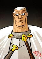 Ser Barristan Selmy by themico