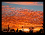 Bright Popcorn Clouded Sunset by RooCat
