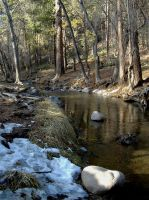 River in Ruidoso by DeloreanREB