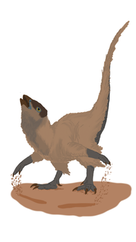 Anomoepus Displaying by CMIPalaeo