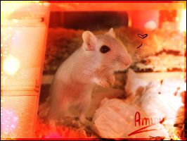 Ammy the gerbil c: by Yujami
