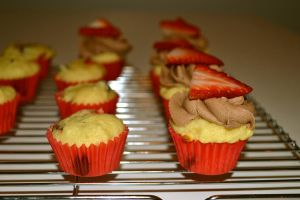 Strawberry and Chocolate Chip Mini Cupcakes by Lily-Gangsta