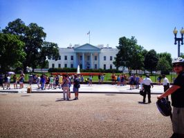White House From the Back by lily314