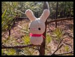 Outback Bunny.. by DarkMoonlight666