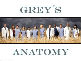 Greys Anatomy by Anathalia