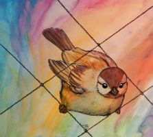 Watercolour bird by heylorlass