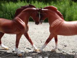 Hearts For Horses by Breyer101