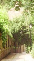 A Hampstead Lane by CuriouSolo