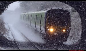 Train in the Snow by trylive