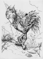 Chocobo by xXNikleXx
