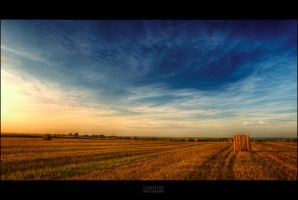 Polish Fields by Syrjusz