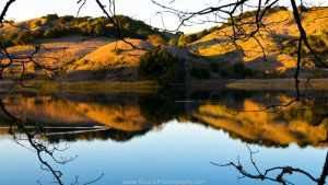 Briones Evening by BuuckPhotography